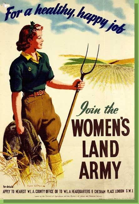 more than one million tons of vegetables were grown in victory gardens during the war - The Victory Garden